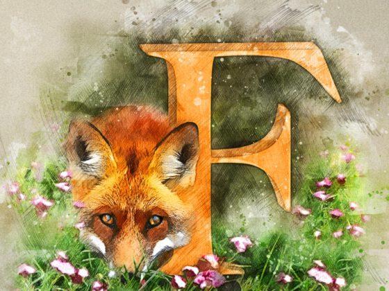F | Fox | Fuchs