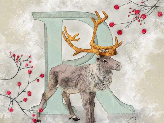 R | Reindeer | Rentier | Rudolph