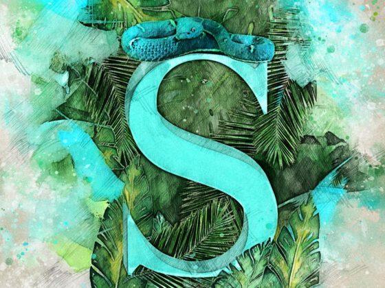 S | Schlange | Snake