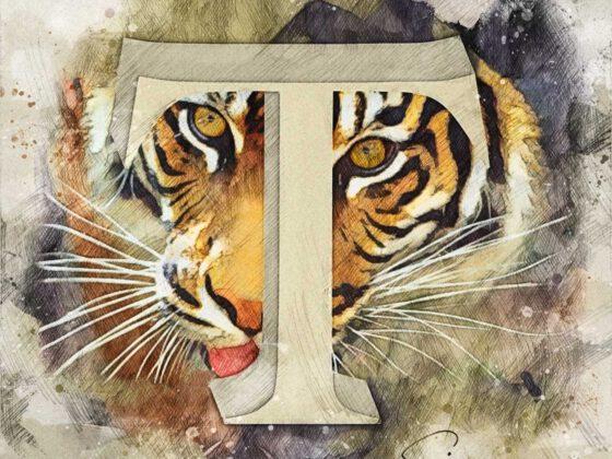 T | Tiger
